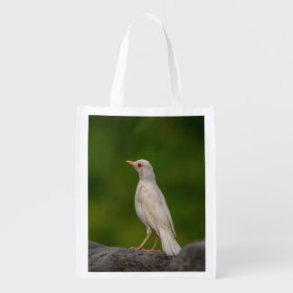 Albino Robin in Crown Point Reusable Grocery Bag