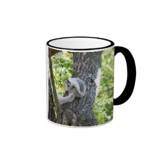 Albino Squirrel Mug Coffee Mug