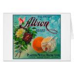 Albion Brand Citrus Crate Label