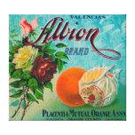 Albion Brand Citrus Crate Label Canvas Prints