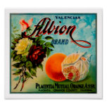 Albion Oranges Produce Crate Label - Poster