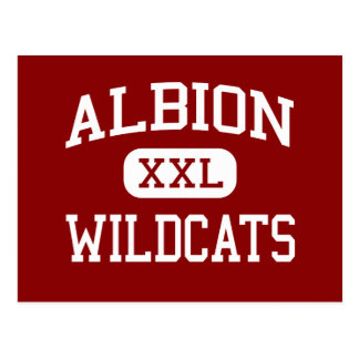 Albion - Wildcats - Middle - Albion Michigan Postcard