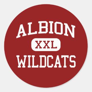 Albion - Wildcats - Senior - Albion Michigan Classic Round Sticker