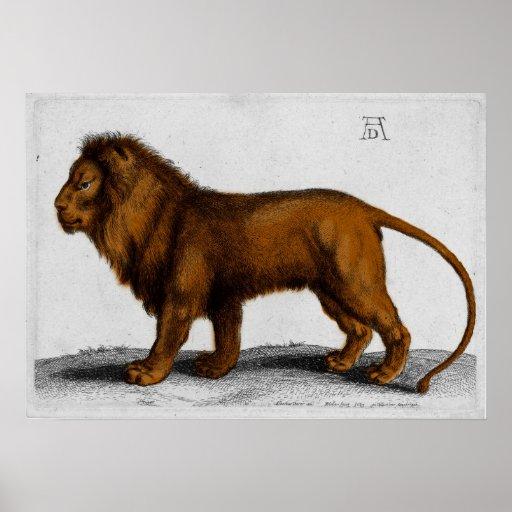 Albrecht Durer Color Engraving Lion Poster