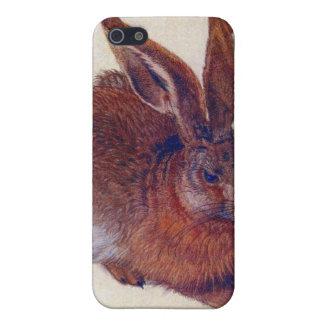 Albrecht Durer - Field hare iPhone 5 Case