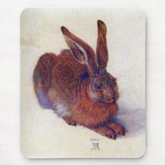 Albrecht Durer - Field hare Mouse Pad
