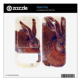 Albrecht Durer - Field hare Skins For Palm Pixi