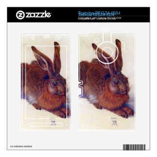 Albrecht Durer - Field hare Toshiba REGZA Decal