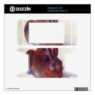 Albrecht Durer - Field hare Decals For Sidekick 4G