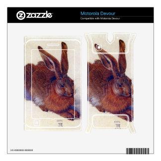 Albrecht Durer - Field hare Motorola Devour Decals