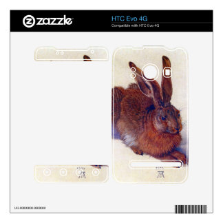 Albrecht Durer - Field hare Skins For HTC Evo 4G