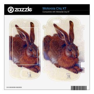 Albrecht Durer - Field hare Motorola Cliq XT Skin