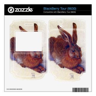 Albrecht Durer - Field hare Skins For BlackBerry