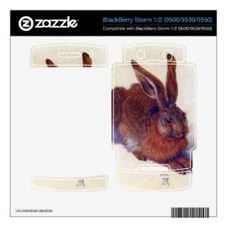 Albrecht Durer - Field hare BlackBerry Storm Decal