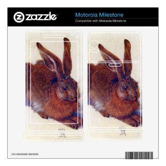 Albrecht Durer - Field hare Motorola Milestone Skins
