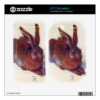 Albrecht Durer - Field hare HTC Sensation Skins