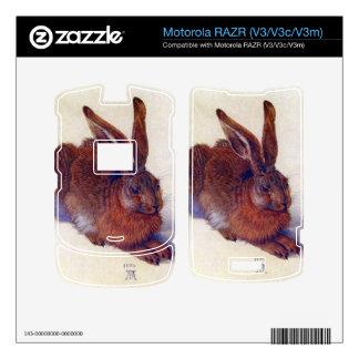 Albrecht Durer - Field hare Motorola RAZR Skin