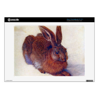 Albrecht Durer - Field hare Acer Chromebook Skin