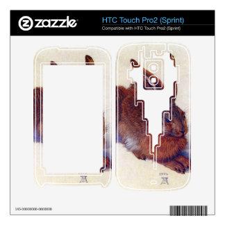 Albrecht Durer - Field hare HTC Touch Pro2 Skin