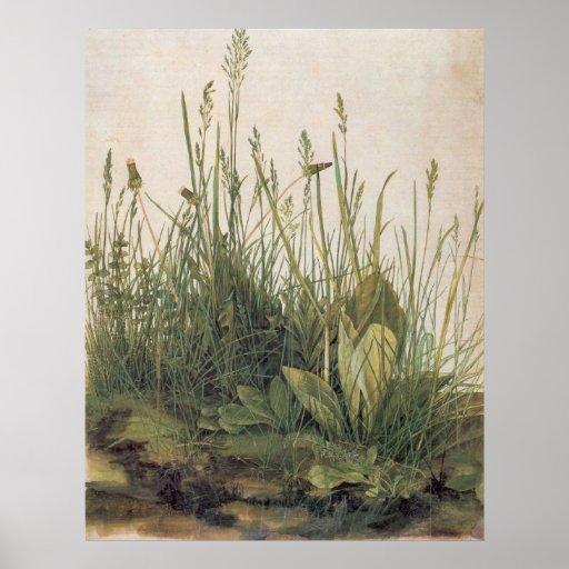 Albrecht Durer Great Piece of Turf Print
