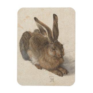 Albrecht Dürer - Hare Rectangular Photo Magnet