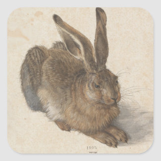 Albrecht Dürer - Hare Square Sticker