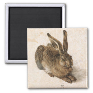 Albrecht Dürer - Junger Hase (Young Hare), 1502 2 Inch Square Magnet