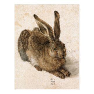 Albrecht Dürer - Junger Hase (Young Hare), 1502 Postcard