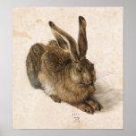 Albrecht Dürer - Junger Hase (Young Hare), 1502 Poster