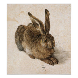 Albrecht Dürer - Junger Hase (Young Hare), 1502 Posters