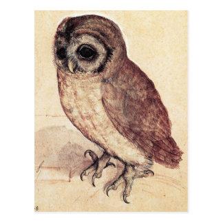 Albrecht Durer la postal del pequeño búho