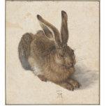 Albrecht Dürer - liebre Esculturas Fotográficas