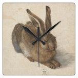 Albrecht Dürer - liebre Reloj
