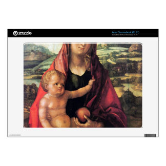 Albrecht Durer - Mary with child against a landsca Decal For Acer Chromebook