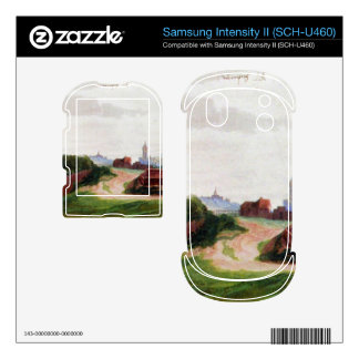 Albrecht Durer - Nuremberg the western part of the Samsung Intensity Skins