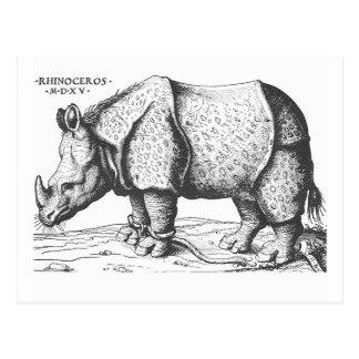Albrecht Durer - Rhinoceros Postcard