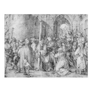 Albrecht Durer Sketch Post Cards