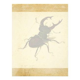 Albrecht Durer Stag Beetle Renaissance Art Drawing Letterhead
