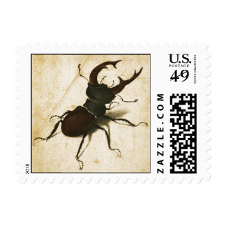 Albrecht Durer Stag Beetle Renaissance Art Drawing Postage