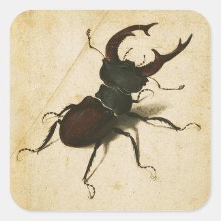 Albrecht Durer Stag Beetle Renaissance Art Drawing Square Sticker