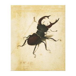 Albrecht Durer Stag Beetle Renaissance Vintage Art Canvas Print