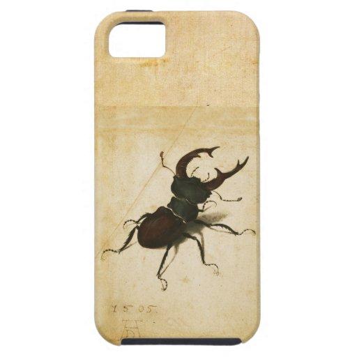Albrecht Durer Stag Beetle Renaissance Vintage Art Cover For iPhone 5/5S
