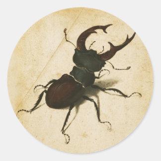 Albrecht Durer Stag Beetle Renaissance Vintage Art Classic Round Sticker