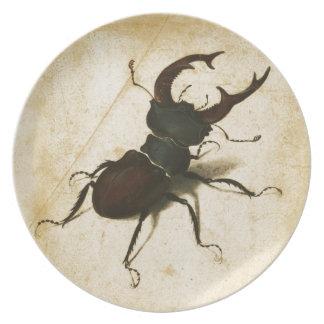 Albrecht Durer Stag Beetle Renaissance Vintage Art Dinner Plate