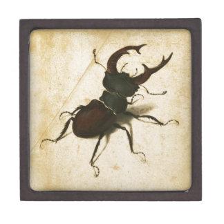 Albrecht Durer Stag Beetle Renaissance Vintage Art Premium Gift Boxes