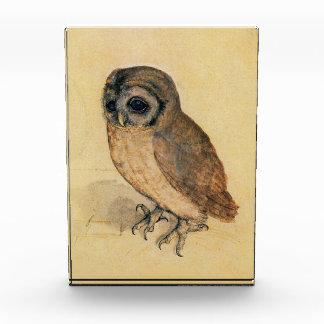 Albrecht Durer The Little Owl Award