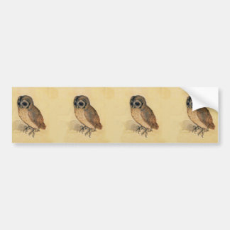 Albrecht Durer The Little Owl Bumper Sticker