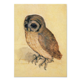 Albrecht Durer The Little Owl Card
