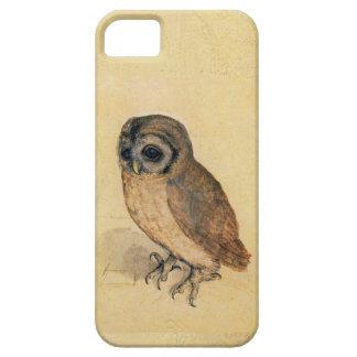 Albrecht Durer The Little Owl iPhone 5 Case