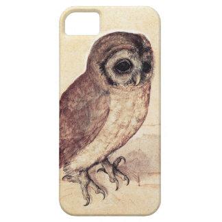 Albrecht Durer The Little Owl iPhone 5 Covers